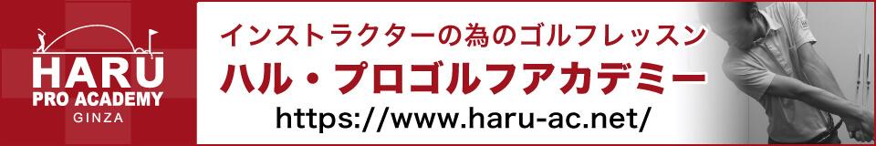 インストラクターの為のマンツーマンゴルフレッスン『ハル・プロゴルフアカデミー銀座』